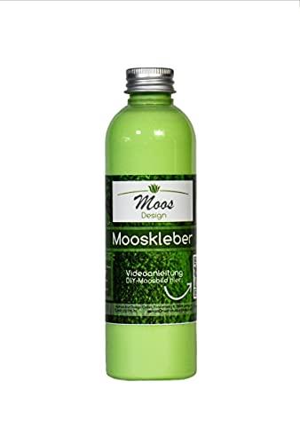 Bastelkleber'Moss-Glue' (200 ml Flasche) Moosbilder Do-It-Yourself Mooskleber zum Moosbilder selber machen günstig kaufen Osterdeko Pflanzenbilder Bastelkleber (0,2 Liter)