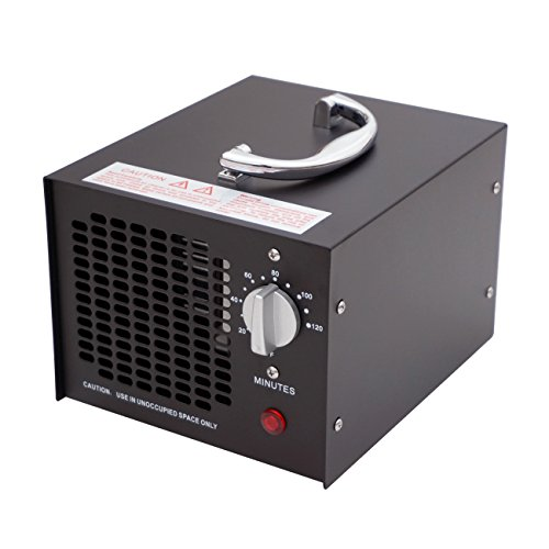ECO-WORTHY 3.5g 220V Ozongenerator Industrielle Luftreiniger Ozonator Luftreiniger