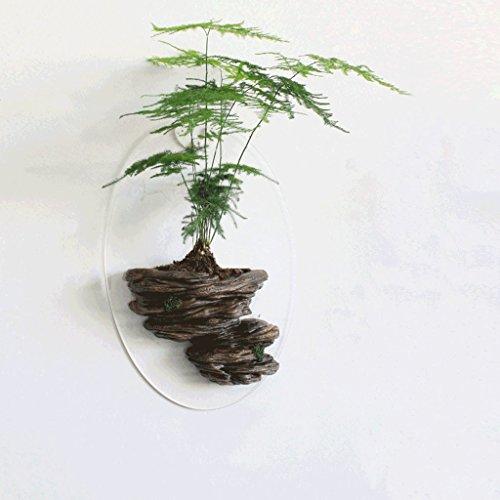 Von Einrichtungs Wohnzimmer Wand Dekoration Wand Topf Kreative Wandhalterung Pflanze Bonsai Zerstörungsfreie Wand Installation (ohne Grünpflanzen) Xuan - Worth Having (Farbe : C)