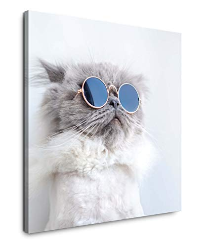 EAUZONE GmbH lustige Katze 90x90cm Wandbild auf Leinwand, Kunstdruck Moderne Bilder