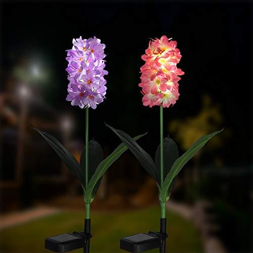 Außen Solarleuchte Garten, Solar Garten Lampen mit LED Hyazinthe Lichter, Dekoration Lichter für den Garten Rasen Terrasse Feld Weg, 2er Pack (Lila und Pink)