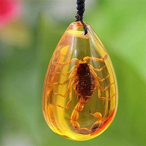 YiniKape Insekt Stein Natur Scorpions Inclusion Amber Baltic-Anhänger-Halskette Startseite Dekorative Stein Hochzeit Reise-Geschenk