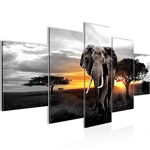Runa Art - Bilder Afrika Elefant 200 x 100 cm 5 Teilig XXL Wanddekoration Design Grau Orange 001251c