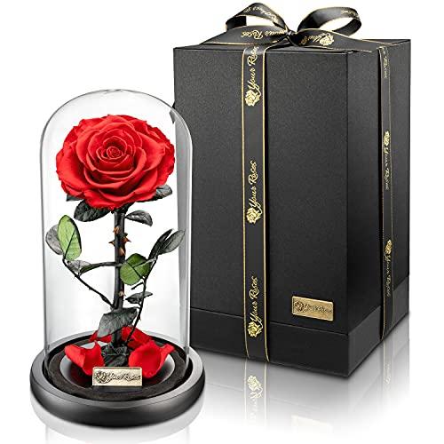 YourRoses® echte Premium Rose im Glas Geschenkbox   Lange Haltbarkeit & edles Geschenk als Liebesbeweis