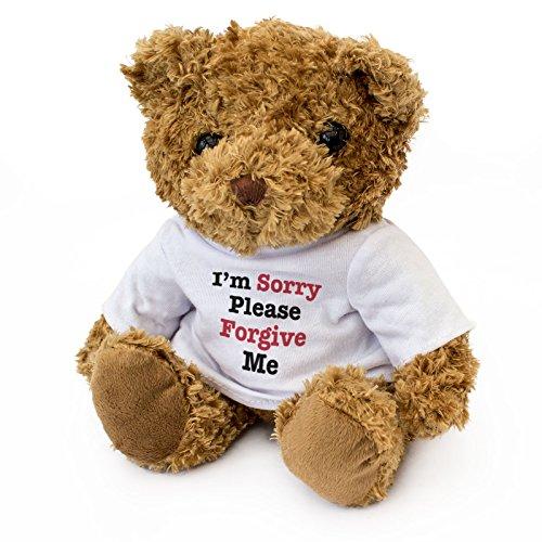 Teddybär mit Aufschrift 'Sorry Please Forgive Me', niedlich, weich, kuschelig, Geschenk, Entschuldigung