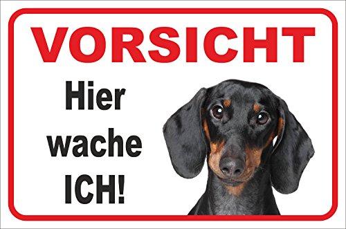 Schild - Vorsicht Kurzhaar Dackel 'Hier wache ich' (20x30cm)