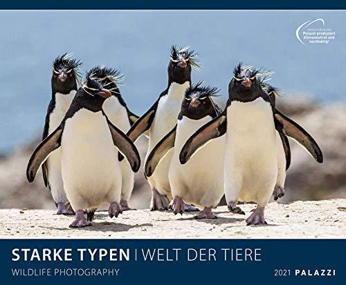 Starke Typen 2021 - Bild-Kalender - Wand-Planer - 60x50: Wildlife Photography