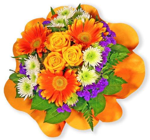 Blumenstrauß Blumenversand 'Viele Grüße' +Gratis Grußkarte+Wunschtermin+Frischhaltemittel+Geschenkverpackung