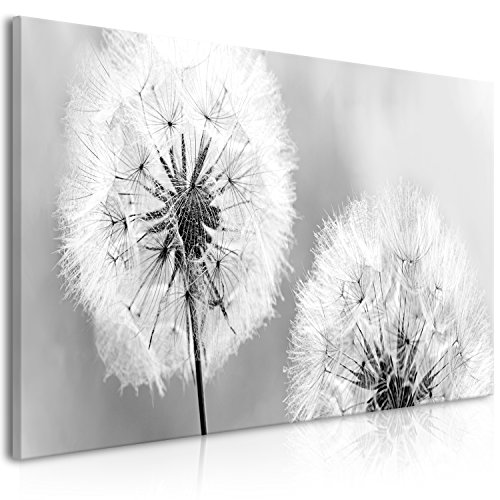 murando - Bilder Pusteblume 100x45 cm Vlies Leinwandbild 1 TLG Kunstdruck modern Wandbilder XXL Wanddekoration Design Wand Bild Panoramabild - Blumen Natur grau Löwenzahn b-B-0262-b-b