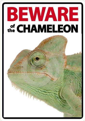 Magnet & Steel Beware of The Chameleon A5Schild