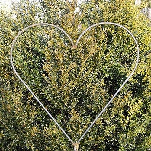 EQT-TEC Gartendekoration Rosenbogen Rosen Herz zum Stecken Rosenranke Gartendeko Deko